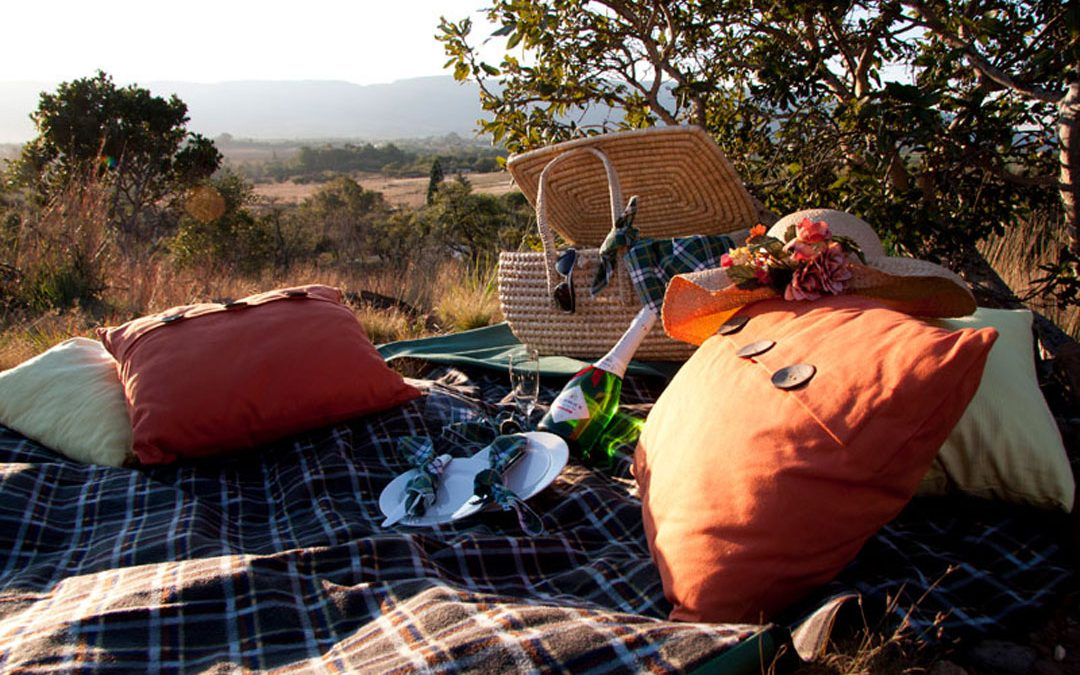 Bush Breakfast – Brunch Picnic at Basil's Boma