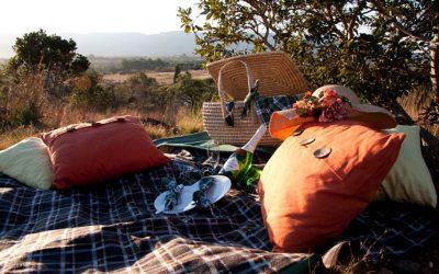 Bush Breakfast – Brunch Picnic at Basil's Boma